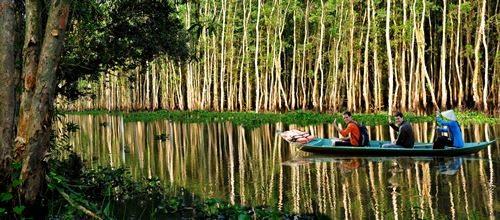 Chèo thuyền vào sân chim ở Khu du lịch Gáo Giồng