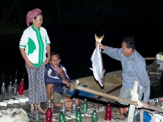 Săn cá trên sông Vàm Nao