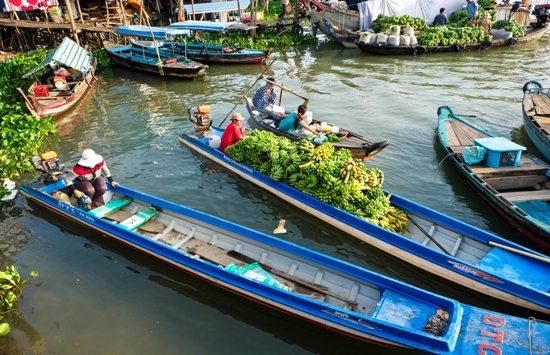 Thành phố Châu Đốc, điểm đến hấp dẫn của du lịch miền tây mùa nước nổi