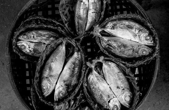 Khô cá Châu Đốc