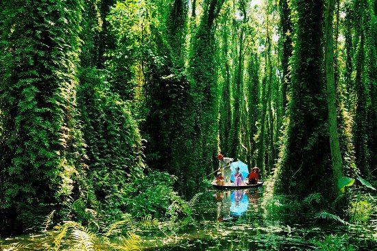 Chèo thuyền trên kênh rạch ở Xẻo Quýt