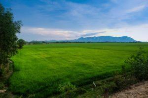 Cảnh đẹp An Giang trong Tour Cần Thơ – Châu Đốc – Hà Tiên