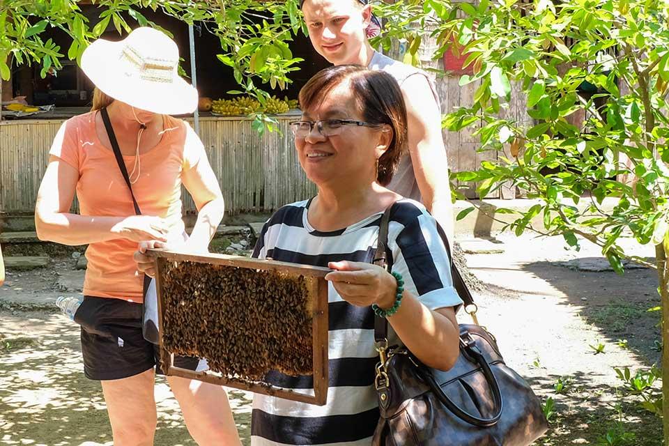 Tham quan cơ sở nuôi ong lấy mật
