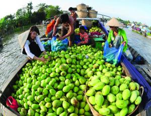Mua bán trái cây trên sông ở miền Tây