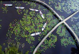 Du lịch mùa nước nổi ở Làng nổi Tân Lập - Long An