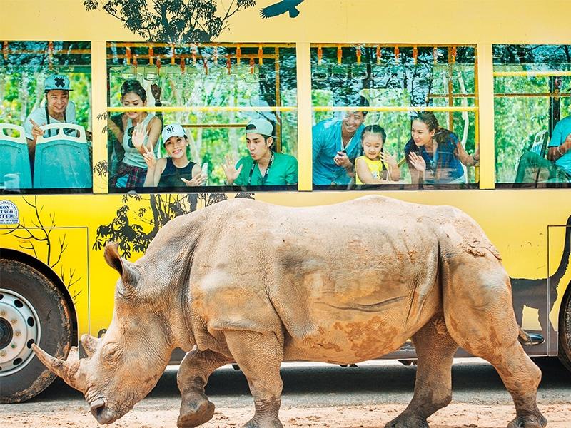 Tham quan Safari Phú Quốc
