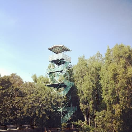Đài quan sát ở Gáo Giồng
