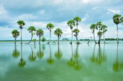 Nước-ngập-tràn-đồng-vào-mùa-nước-nổi-miền-Tây-ở-An-Giang-696x389
